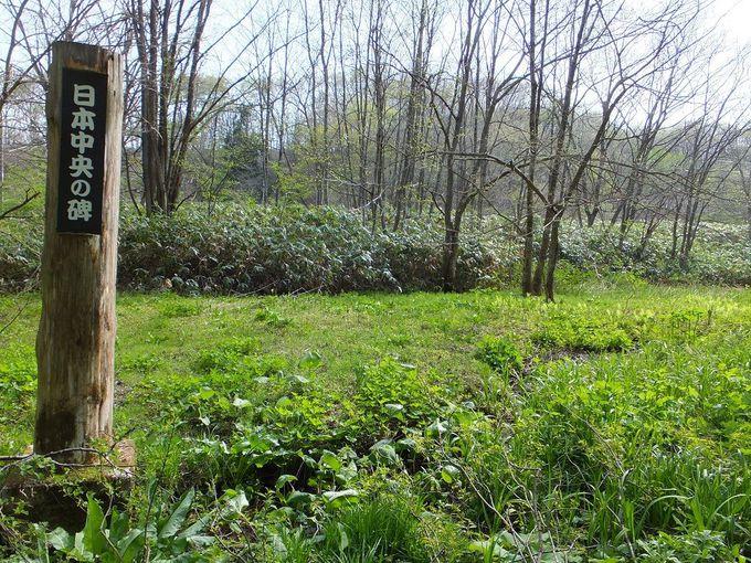 「日本中央の碑発見地」はぬかるみの湿地帯に