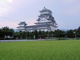農村風景にそびえ立つ!日本で一番高い天守閣・越前 勝山城