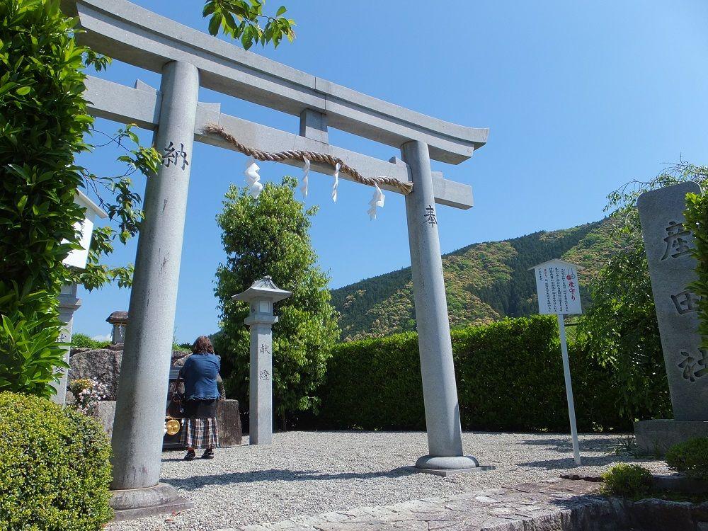 産田社は創造のパワーを宿し、大斎原は静かな趣の聖地!