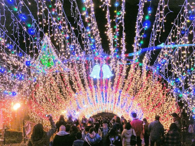 幻想的な水の郷で開かれる光の宴!