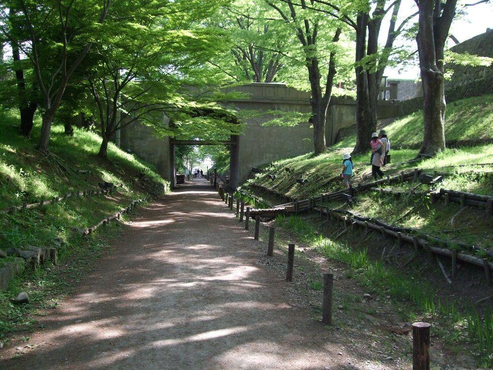二の丸堀は今!けやき並木遊歩道には電車も走った