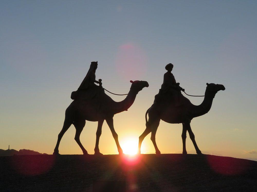 必見!ラクダの足元から昇る朝日を拝む