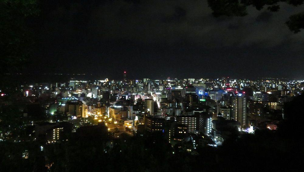 優美!城山展望台から鹿児島市内の夜景を堪能