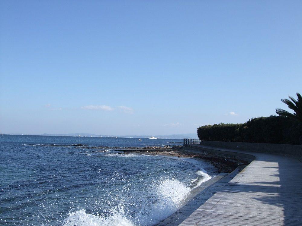 海辺の遊歩道は絶景!観音崎の深い歴史も発見