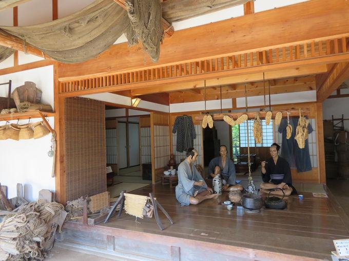 漁師の年収は江戸庶民をはるかに超えていた!