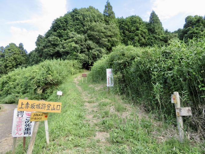 大阪平野を一望!上赤坂城の絶景