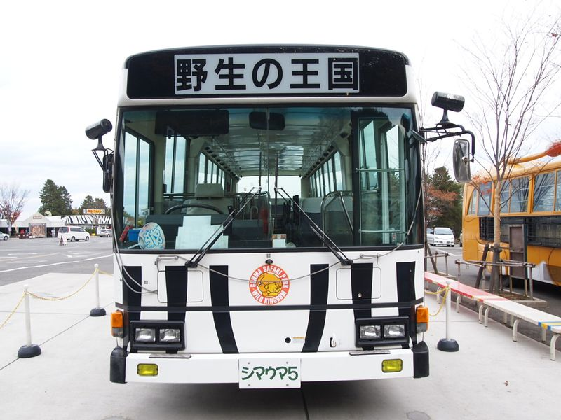 人気のサファリバスでまわる!!関東最大級「群馬サファリパーク」
