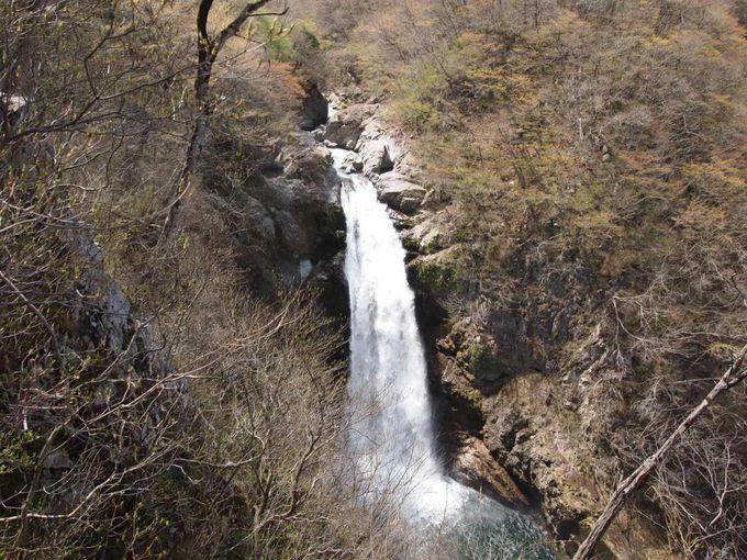 絵になる美しさ!!高僧も修行したと云われる秋保大滝。