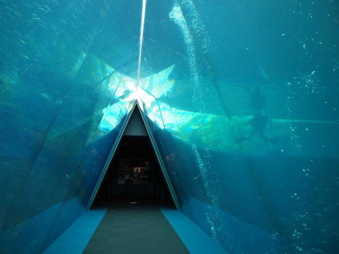 優しいブルー!!神秘的な雰囲気が漂う「潮目の海」