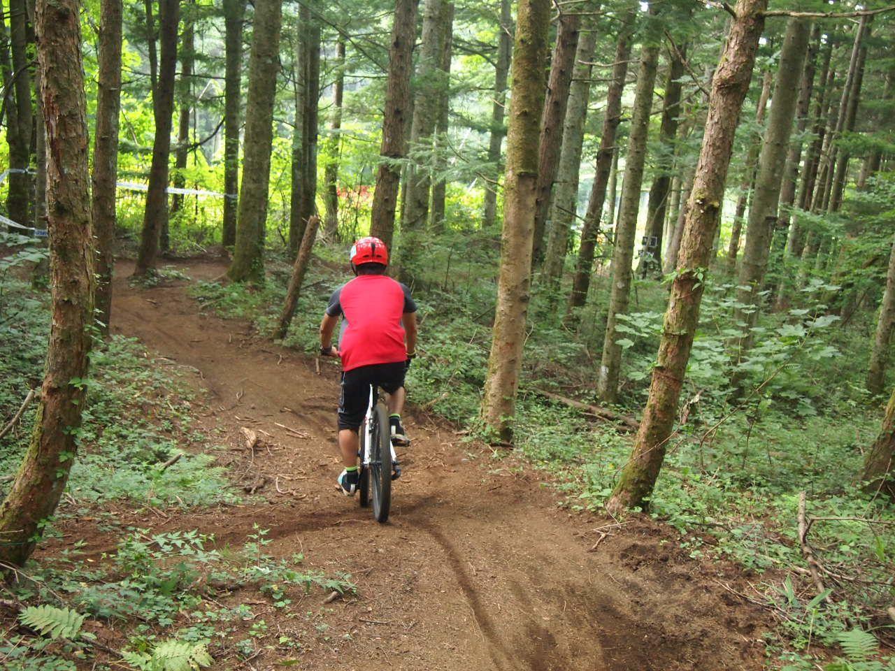 木立の中をすいすい進むEコース!