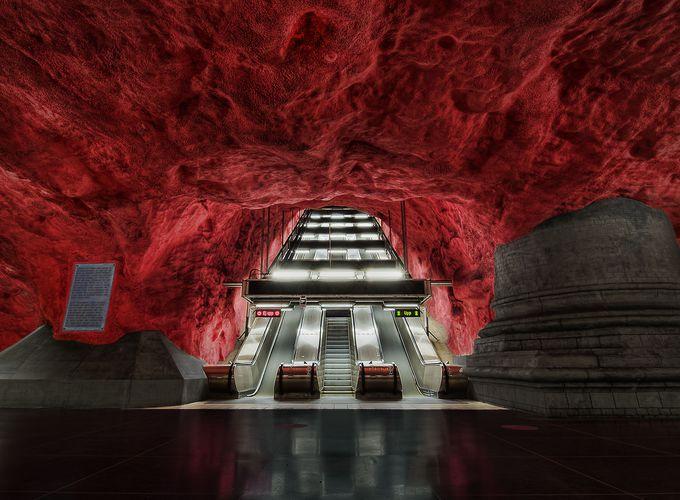 「世界で最も長い芸術展示」と呼ばれる理由