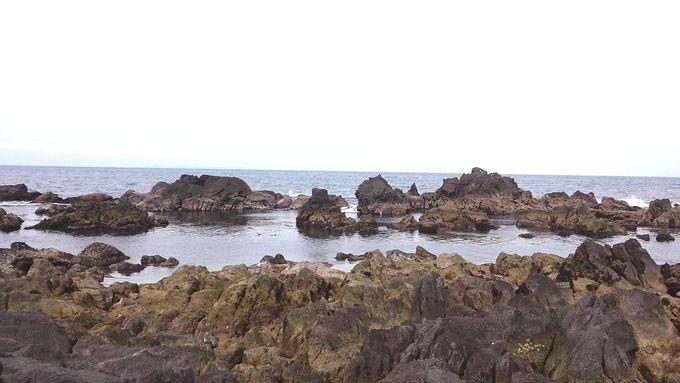 外海側の「ミニ湾」は絶好のシュノーケリングポイント!