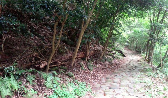 浴衣で散歩する箱根旧街道の石畳