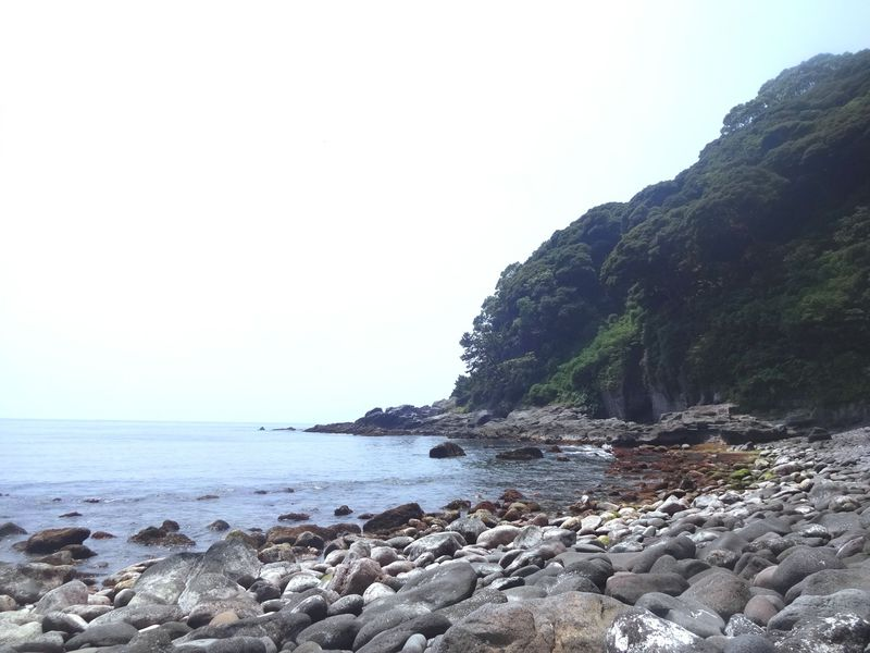 神奈川で磯遊び&シュノーケリング!真鶴半島「番場浦海岸」の穴場へGO!