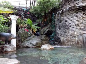 水着でジャングル探検!?熱川ホテルカターラのスパ「PAU」