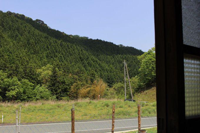 遠くの山々から聴こえる木々のせせらぎ