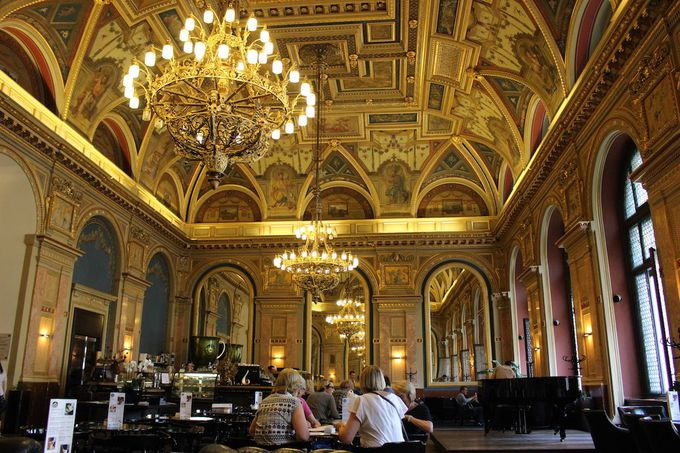 2. 本屋さんの2階にある、美しすぎる「アレクサンドラ・ブックカフェ」