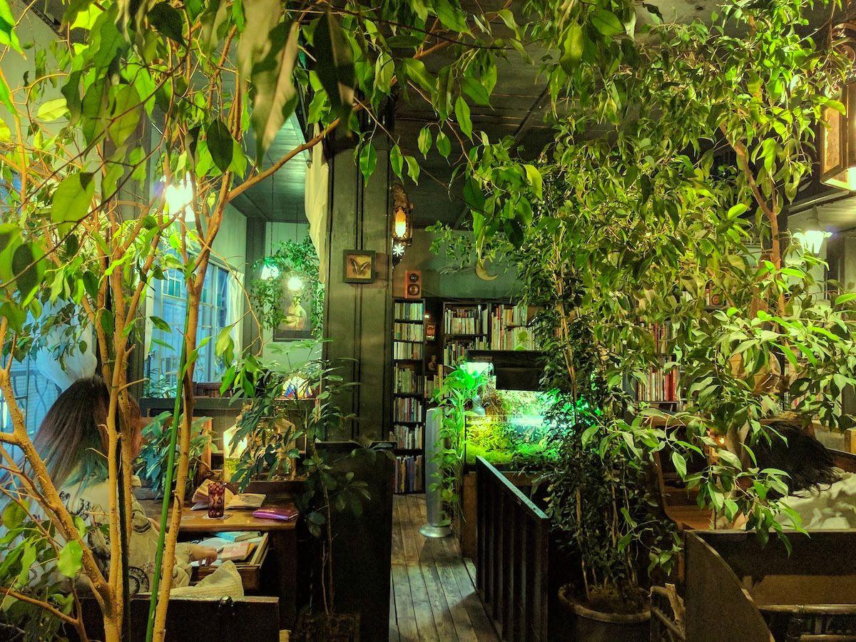 読書専門の静かな喫茶店!東京・高円寺の「アール座読書館」