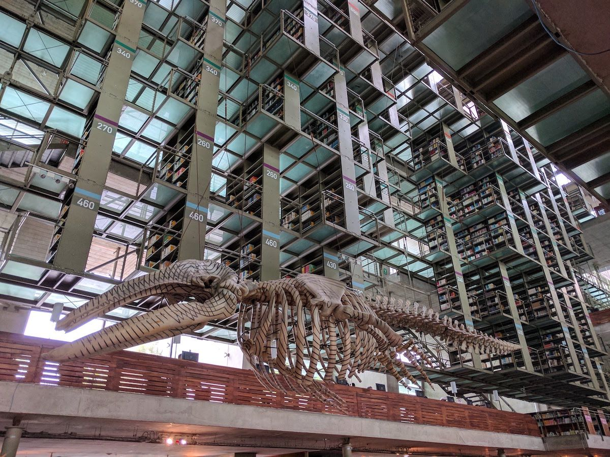 SF的・近未来的で神秘的な雰囲気の図書館