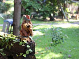 チェンマイ観光におすすめ!「ゴンゲオゲストハウス」が魅力的な理由とは?