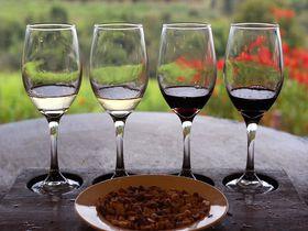 ミャンマー・インレー湖で希少なご当地ワイン「レッドマウンテンワイナリー」