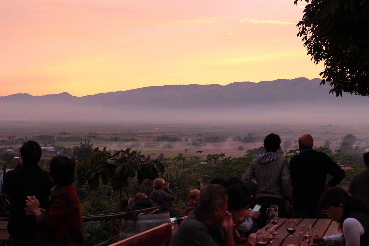 希少なミャンマーワインを原産地で楽しむ贅沢