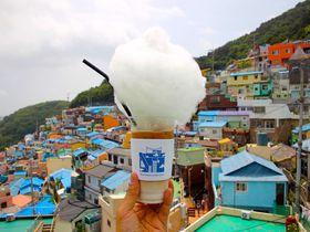 小さな村とアートの幸福な出会い 韓国・釜山「甘川文化村」