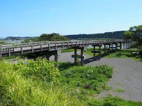 ギネス認定!世界最長の木造橋 静岡県島田市「蓬莱橋」