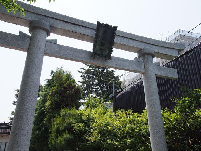 近くには尾山神社の鳥居が