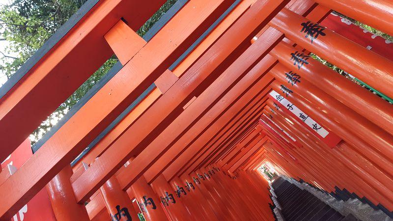 東京にも千本鳥居はある!申年にオススメな「山王日枝神社」