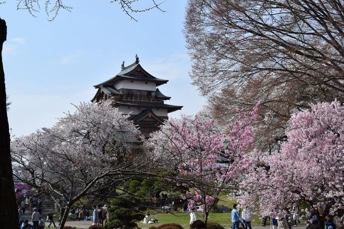 「浮城」の異名を持つ上諏訪のシンボル高島城