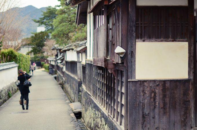 笠山で椿を楽しんだあとは、歴史を感じられる萩の町を散策