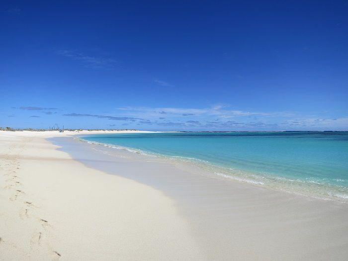 世界遺産「ニンガルー コースト」でオーストラリアのアウトバックと珊瑚礁の海を楽しもう!