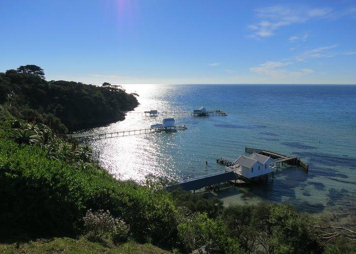 メルボルンっ子に人気の保養地「モーニントン半島」で、美しい海とワイナリー巡りを楽しもう!