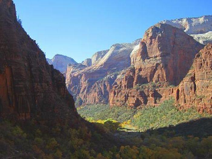 岩と水と緑のコントラストが美しい「ザイオン国立公園」