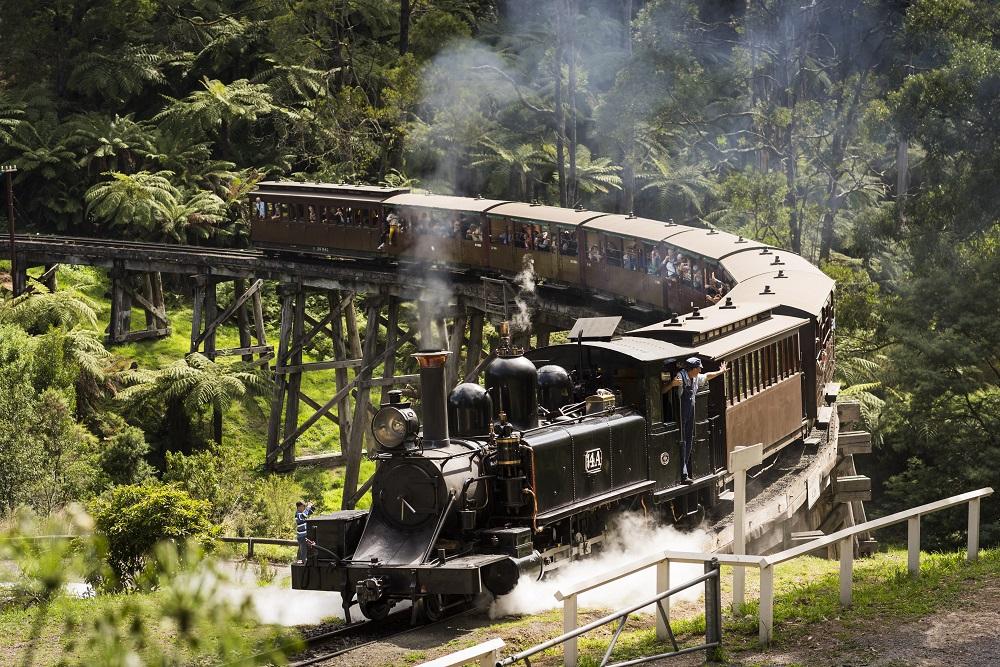 森の中を駆け抜けるパッフィンビリー鉄道