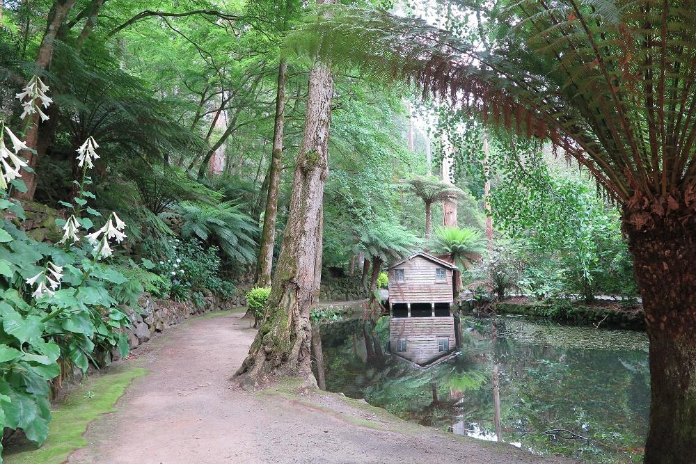 森の中に造られた庭園巡り