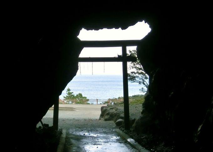 まるで南の島の風景!太平洋を一望「室戸岬」