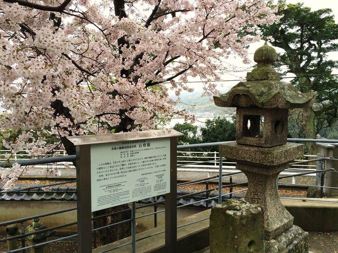 市指定有形文化財「梵鐘」、「六地蔵石幢」、「石灯籠」