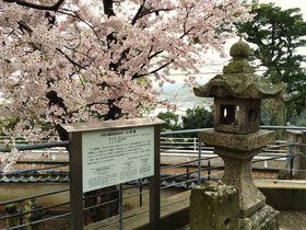 長崎市香焼町「円福寺」は弘法大師・空海ゆかりの地名と寺院