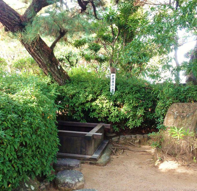 「弁慶産湯乃井戸」とその他の生誕に関連する史跡