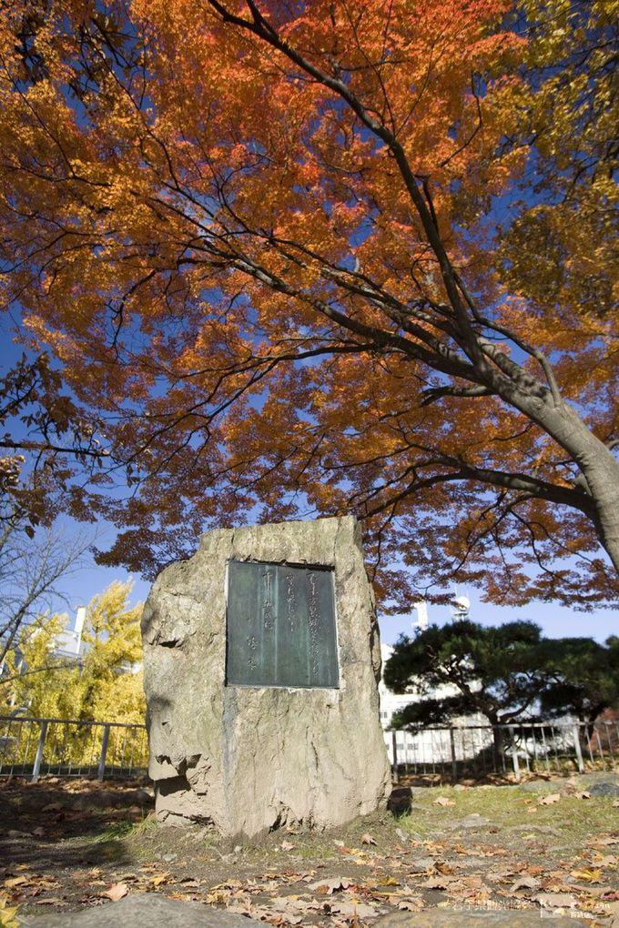 岩手公園(盛岡城跡公園)の歌碑