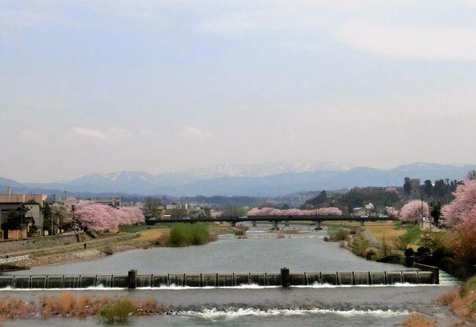故郷の山河「白山連峰と医王山」と庭造り
