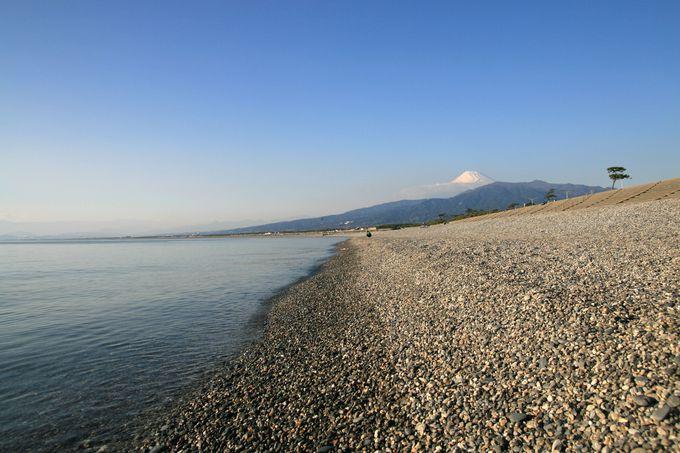 四重奏の絶景:千本浜海岸、千本松原、愛鷹山、富士山