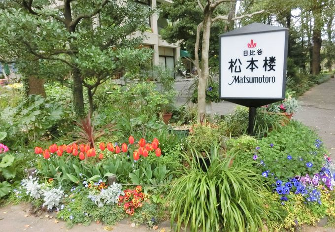 """ハイカラ好きのモダンボーイとモダンガールに人気「松本楼」の""""洋食"""""""