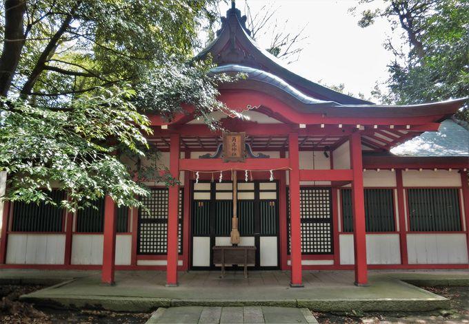 敦賀の地名の由来「角鹿神社」
