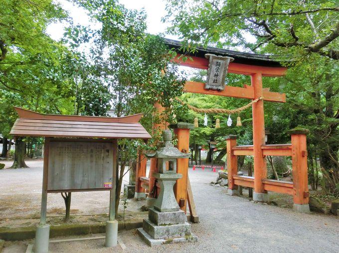 まさに日本遺産!全国でも貴重な伝統の神事・鷺舞