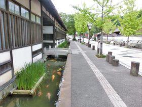 風情ある町並みに癒されたい!全国の「小京都」おすすめ10選
