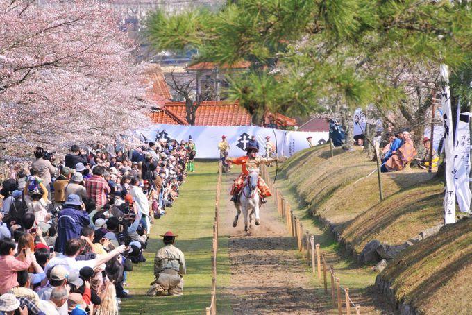 """""""鷲原八幡宮""""と日本で唯一当時の原型を残した流鏑馬の馬場"""