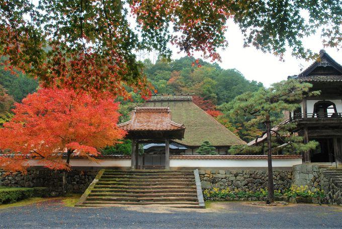 覚皇山「永明寺」の歴史